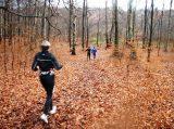 Billeder fra Rudersdal Marathon 16-Nov-2008 (12/139)