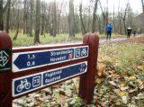 Billeder fra Rudersdal Marathon 16-Nov-2008 (19/139)