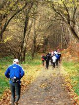 Billeder fra Rudersdal Marathon 16-Nov-2008 (26/139)