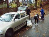Billeder fra Rudersdal Marathon 16-Nov-2008 (32/139)
