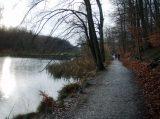 Billeder fra Rudersdal Marathon 16-Nov-2008 (36/139)