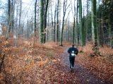 Billeder fra Rudersdal Marathon 16-Nov-2008 (51/139)