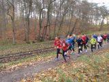 Billeder fra Rudersdal Marathon 16-Nov-2008 (71/139)