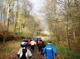 Billeder fra Rudersdal Marathon 16-Nov-2008 (90/139)