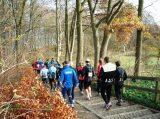 Billeder fra Rudersdal Marathon 16-Nov-2008 (94/139)