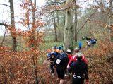 Billeder fra Rudersdal Marathon 16-Nov-2008 (96/139)