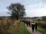Billeder fra Rudersdal Marathon 16-Nov-2008 (97/139)