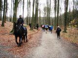 Billeder fra Rudersdal Marathon 16-Nov-2008 (105/139)