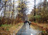 Billeder fra Rudersdal Marathon 16-Nov-2008 (125/139)