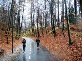 Billeder fra Rudersdal Marathon 16-Nov-2008 (126/139)
