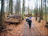 Billeder fra Rudersdal Marathon 16-Nov-2008 (132/139)