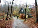 Billeder fra Rudersdal Marathon 16-Nov-2008 (134/139)