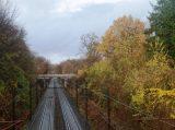 Billeder fra Rudersdal Marathon 16-Nov-2008 (138/139)
