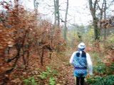 Billeder fra Rudersdal marathon 18-Nov-2007 (19/73)