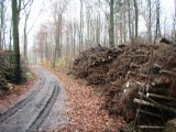 Billeder fra Rudersdal marathon 18-Nov-2007 (20/73)