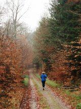 Billeder fra Rudersdal marathon 18-Nov-2007 (26/73)