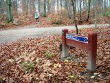 Billeder fra Rudersdal marathon 18-Nov-2007 (27/73)