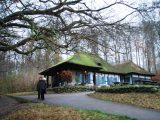 Billeder fra Rudersdal marathon 18-Nov-2007 (55/73)