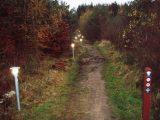 Billeder fra Rudersdal marathon 18-Nov-2007 (62/73)