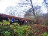 Billeder fra Rudersdal marathon 18-Nov-2007 (67/73)