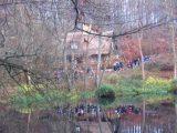 Billeder fra Rudersdal marathon 18-Nov-2007 (68/73)